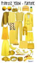 primrose yellow 2